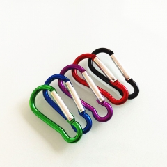Aluminum Carabiner Clips Set of 5Pcs Camping Hiking Hook Keychain Clip