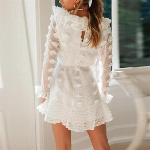 Sexy Perspective V-Neck Lace Long Sleeve Dress